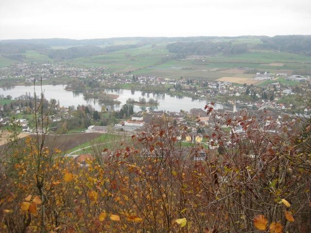 Blick von ganz oben auf Stein und den Rhein